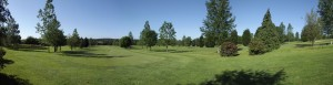 Panorama from the 8th Tee